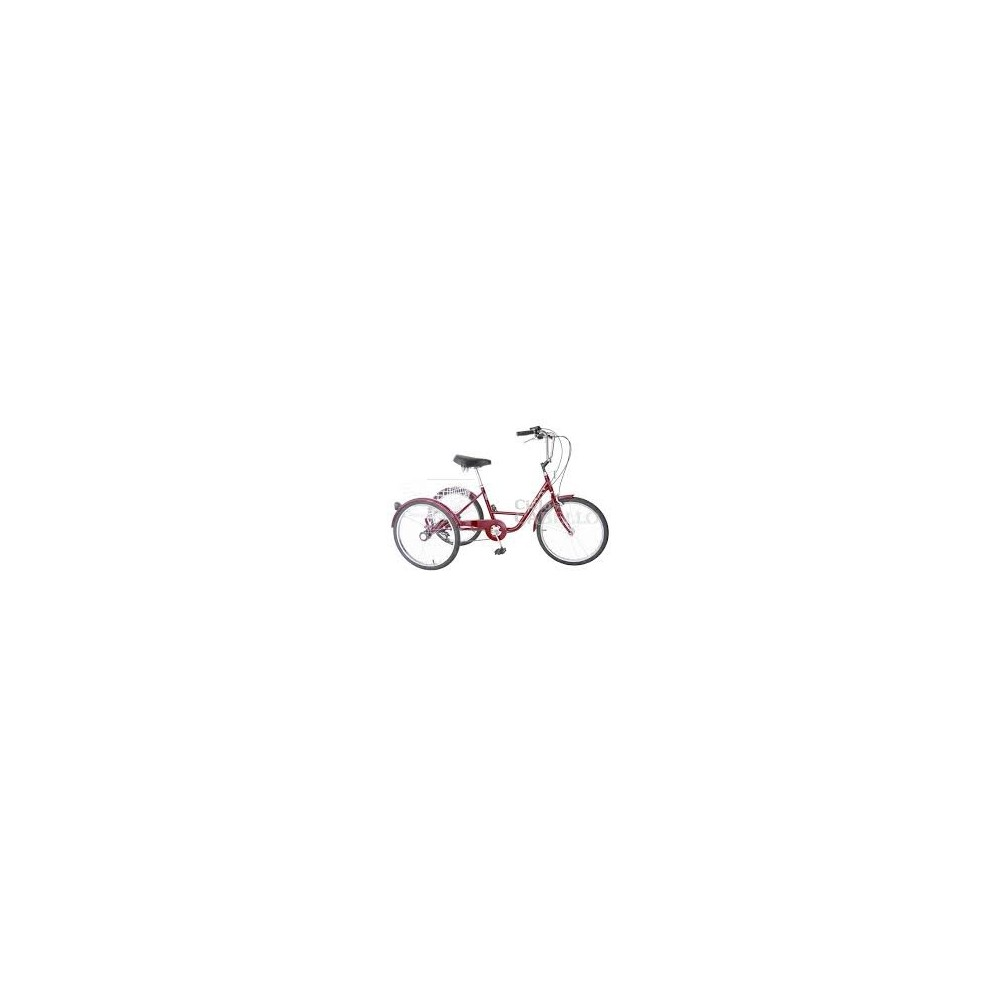 "Triciclo 24"""